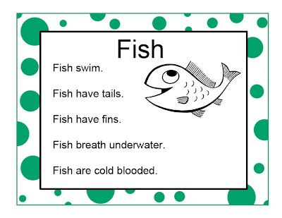 Fish activities printables and resources preschool for Fish facts for kids