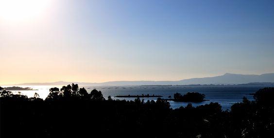 Situada en el corazón de las Rías Baixas (Galicia), Adega Condes de Albarei elabora Albariños de la más alta calidad con reconocimiento internacional