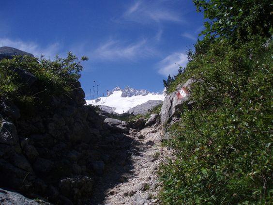 DachsteinblickAm Weg zur Simonyhütte / Schöberl