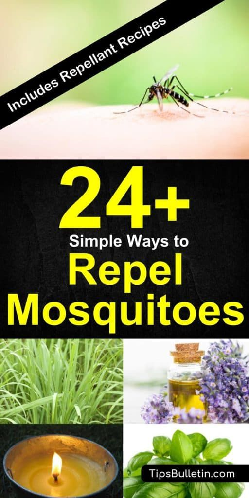 24 Simple Ways To Repel Mosquitoes Mosquito Citronella Candles