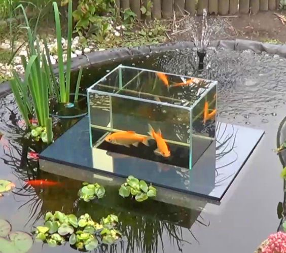 Floating fish koi pond observatory lets you view your fish for Unusual pond fish