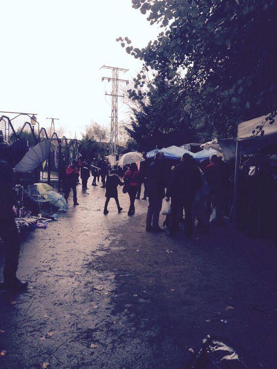 Festival castaña asada Aleson #LaRioja