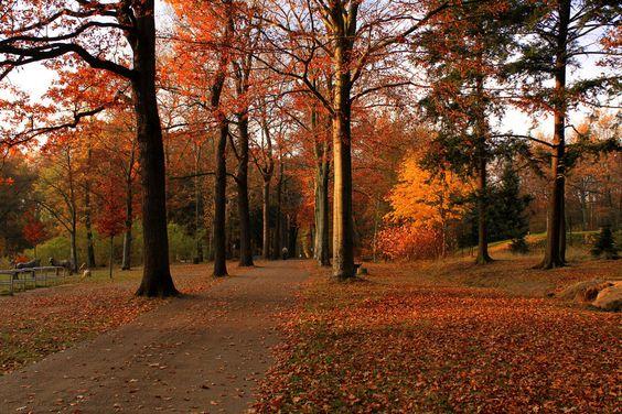 Nirgendwo findest Du Ruhe. | 23 Gründe, niemals nach Chemnitz zu fahren