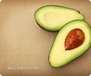 Boost your memory naturally with these nutrient-packed foods
