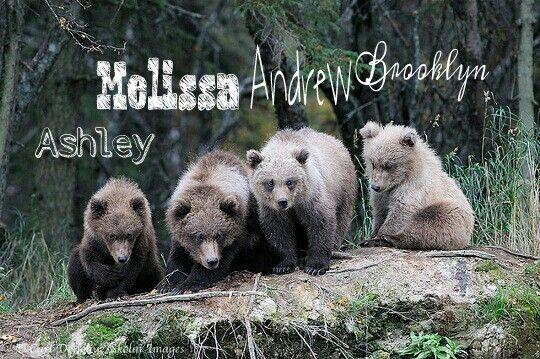 Our bear cubs