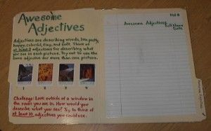 writing open-ended activities on file folders.  Students pick out a different folder to take home each night.  They complete the folder's activity on a sheet of notebook paper and fill out the tracking form reflection on the front of the chart so they know which folders they've completed