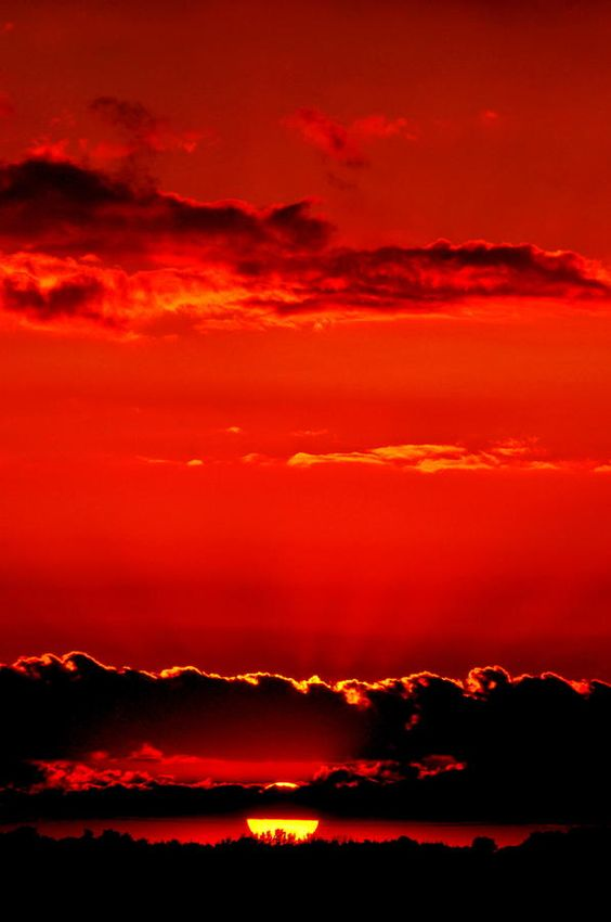 ✮ A Magnificent Sunset :  This beautiful Sunset is so rich and special. Let us learn to express it!  It'a a perfect view with lovable memories. Even bitter memories are sweet to remember! Ric Arellano