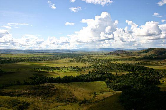 La Gran Sabana. Canaima National Park, Venezuela. Photo (cc) Inti.