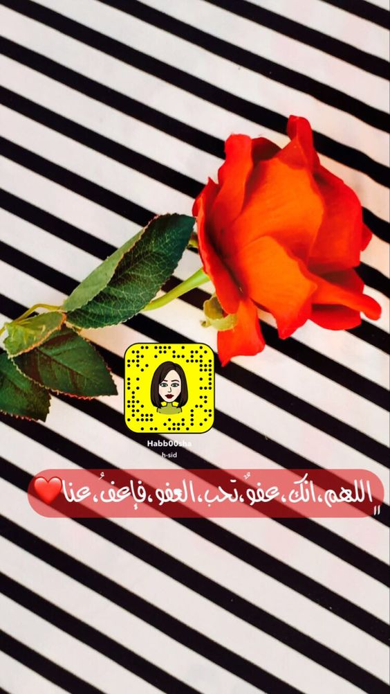 Pin On Snapchat تصويري