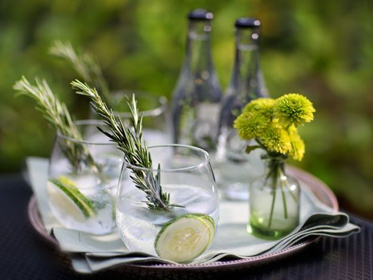Cucumber-Rosemary Gin and Tonic (I will just have water in my glass): Summer Cocktail, Gin And Tonic, Tonic Recipe, Summer Drink, Rosemary Gin, Cucumber Gin, Gin Tonic, Cucumber Rosemary, Food Drink