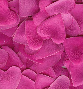 hearts petals | silk heart petals 1000 fuschia silk heart petals