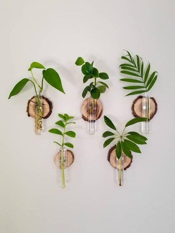 ide tanaman tempel