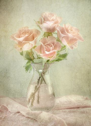 Roses by Mandy Disher, via Flickr: