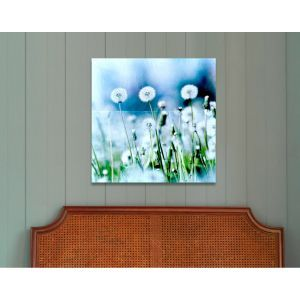Cotton Puffs Canvas Print by Oliver Gal