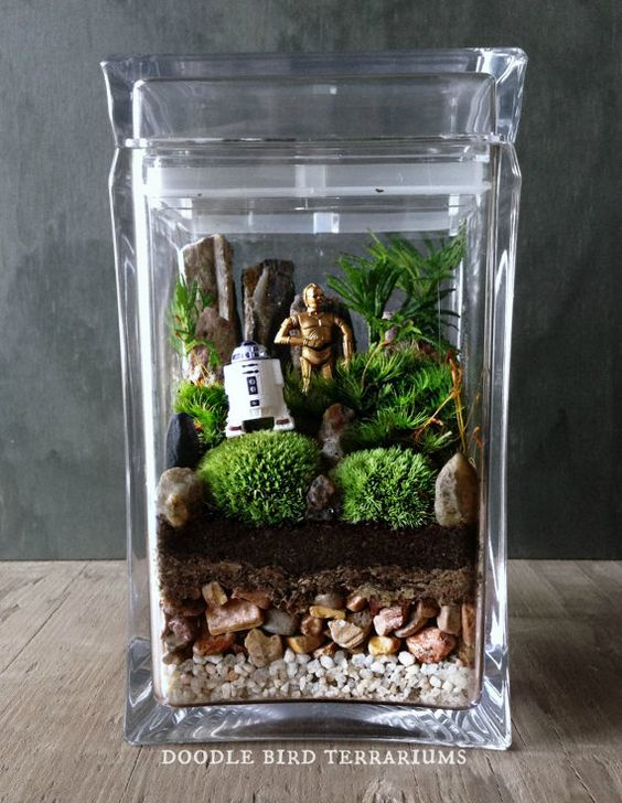 Star Wars Terrarium / R2 D2 C 3Po Ewok Yoda/ Movie Memorabilia Collectible Gift Set