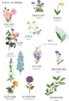 Birth Flower Family Print Unframed Birth Flower Tattoos Birth Flowers Birth Month Flowers