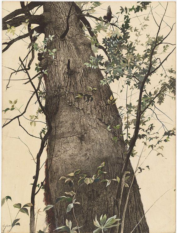 Andrew+Wyeth+-+El+roble,+1944