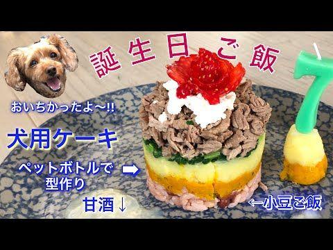 愛犬の誕生日 犬用ご飯ケーキ 手作り誕生日プレート ペットボトルを使って盛り付け Homemade Healthy Dog Birthday Cake Recipe 701 Youtube 犬のケーキ 犬のバースデーケーキ 誕生日プレート