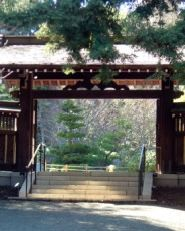 Find serenity while exploring these Japanese gardens, which were designed by a descendant of the Emperor's gardener at Hakone Gardens in Saratoga, California #Travel #SanJose #SiliconValley #BayAreaTravel
