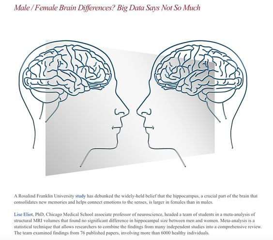 Are there gender differences in male vs female brains?  Yes or No?  http://www.rosalindfranklin.edu/ia/UniversityNews.aspx#braindifferences