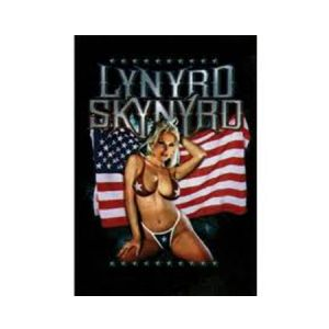 Lynyrd Skynyrd American Flag Textile Poster - Nothing says Lynyrd Skynyrd quite like an American flag and half naked woman – the perfect poster for any man cave! 30 x 40.