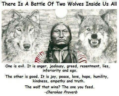The battle of the two wolves