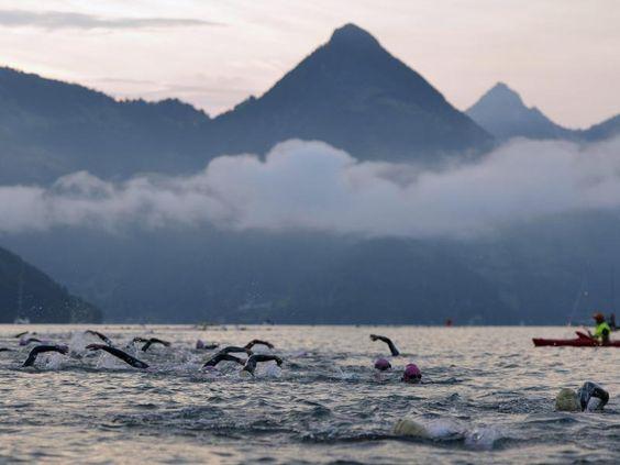 Schwimmer haben sich am dritten Tag des #Gigathlon auf die 4-Kilometer-Distanz im Vierwaldstätter See begeben. (Foto: Urs Flueeler/dpa)