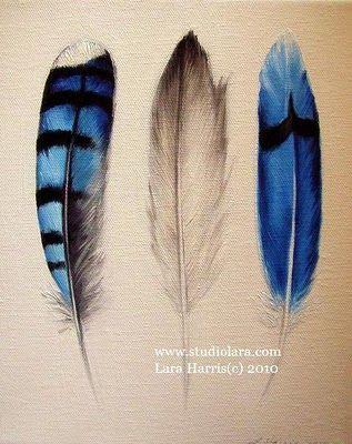 Blue Jay Feathers Legend of the Bluebonnet!!
