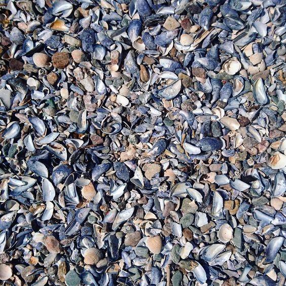 #noticewhatyounotice #Scotland #accidentalart #payattentiontodetails #payattentiontodetail #nature #insta_scotland #igersscotland #ig_scotland #perspective #experimental #altart #naturalpatterns #naturephotography #natural #natureart  #landscape #beach #seaside #abstract #psychogeography #wanderlust #wanderfolk by draaier_photos