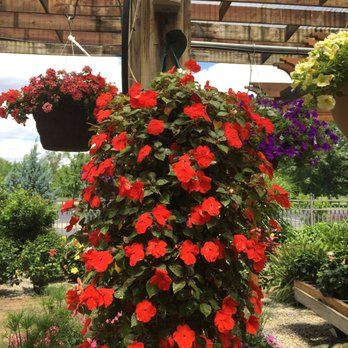 Photo Of Berns Garden Center Landscaping Middletown Oh United