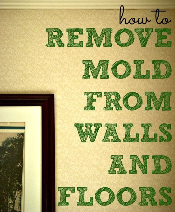 Cleaning Recipes Cement Walls And Remove Mold On Pinterest