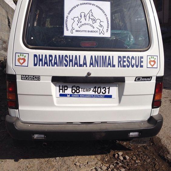 Thank you Brigitte Bardot Foundation for giving us a new Mobile Clinic Van. Yay. #dharamsaladogs #thankyou #dharamsala #animalwelfare