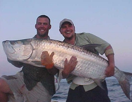 Fishing charters deep sea and boats on pinterest for Miami fishing supply