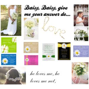Daisies make gorgeous wedding flowers as you can see from this inspiration board, from 'flowers in her hair' to daisy wedding bouquets.