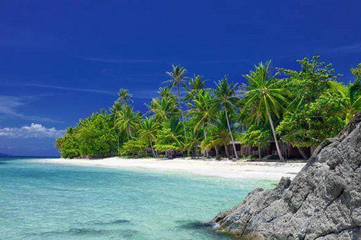 Wit #zandstrand met #palmbomen in de #Caribbean #reizen #travel #oceaan #strand #water #travelbird