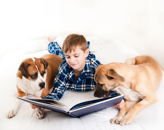 Dogs, Books And Kids, How Reading To Animals Helps Kids Learn