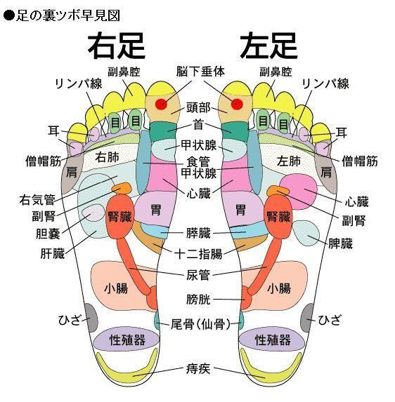 足の裏 痛み ツボ