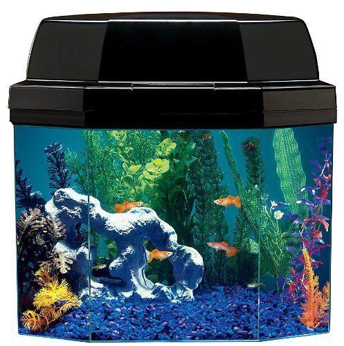 Aquarius aq15002 semi hexagon 5 gallon aquarium with hood for Fish tank hood