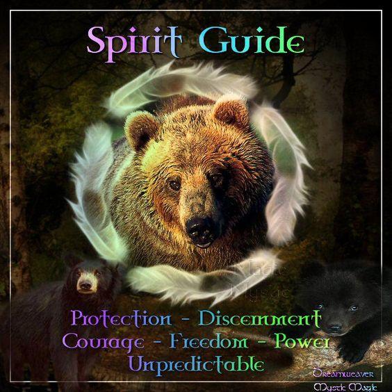 Animal Guide: Bear Spirit Guide