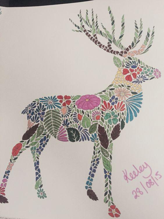 Donkey From Millie Marottas Animal Kingdom Colouring Book