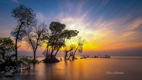 Sunrise at Dadap with Ade Ratna and other great photographers by...  Sunrise at Dadap with Ade Ratna and other great photographers hariwid