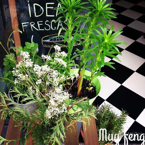Mini jardín Muy  #primaveramuy #condeduquegente #plantas #vida#baresqlugares #alergias by muyplacerenconserva