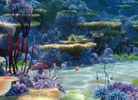 23 Pemandangan Dasar Laut Yang Indah Alam Bawah Laut Steemit Download Indonesia Surga Terumbu Karang Dunia Good News Fr Di 2020 Pemandangan Lautan Cara Menggambar