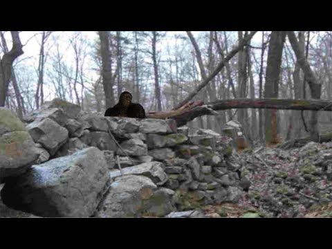 Bigfoot Tribe Misses Grandpa Squatchable Stories Relationship Over Stories Grandpa