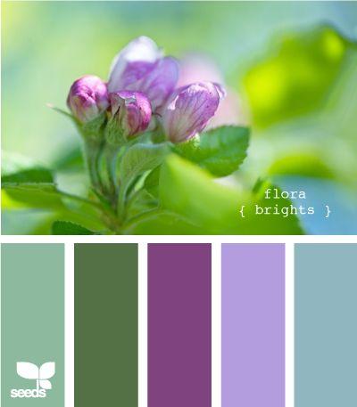 flora brights #1: