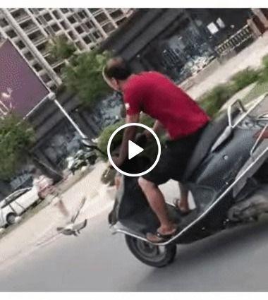 Ave apostando corrida com um de moto