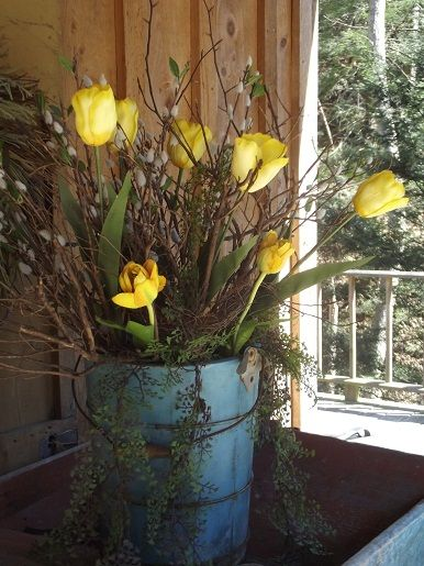 Spring tulips in old wooden bucket