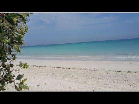 عيد الغدير In 2020 Outdoor Water Beach