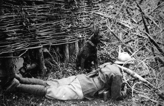 Fotos de la Primera Guerra Mundial: 99 aniversario del verano de su comienzo (IMÁGENES). 1918. Francotirador francés y su perro, en el frente.