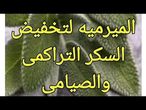 الميرميه تخفض السكر التراكمى وتخفض السكر المرتفع الى معدلاته الطبيعية Youtube In 2021 Health Education Health Info Arabic Food